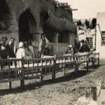 أول مطعم أُتهم ببيع لحوم القطط في الكويت !