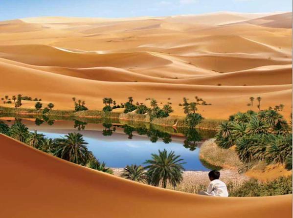 واحة في الصحراء