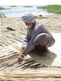 """عامل يقوم بتجميع البواري """" عيدان القصب """" لنسج حصير"""