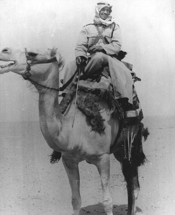 الهجانة وحرس الحدود في الكويت قديما