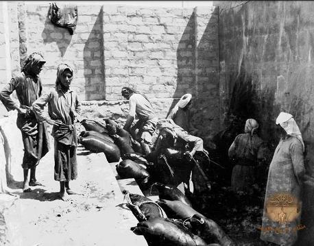 تعبئة المياه في القرب كما بدت قديما في الكويت