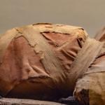 الأشعة المقطعية تكشف مقتل الفرعون الشجاع على يد خمسة مهاجمين