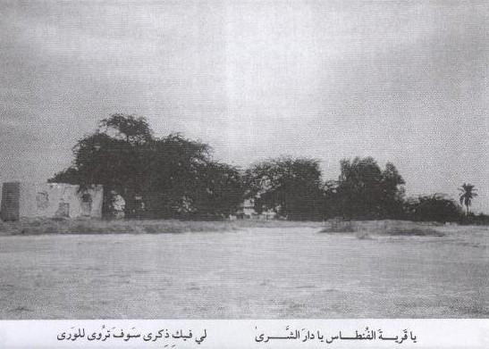 مزارع وبساتين قرية الفنطاس قديما