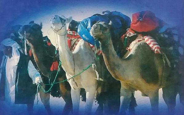 أدب الرحلات إلى الخليج العربي و العالم العربي والإسلامي